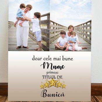 tablou canvas personalizat bunica